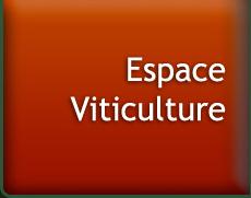 Espace viticulture